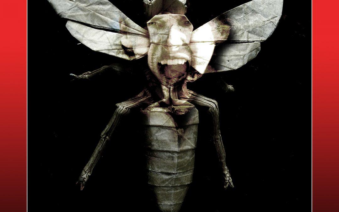 """HODTV: """"Paper Wasps"""" – Recensione"""